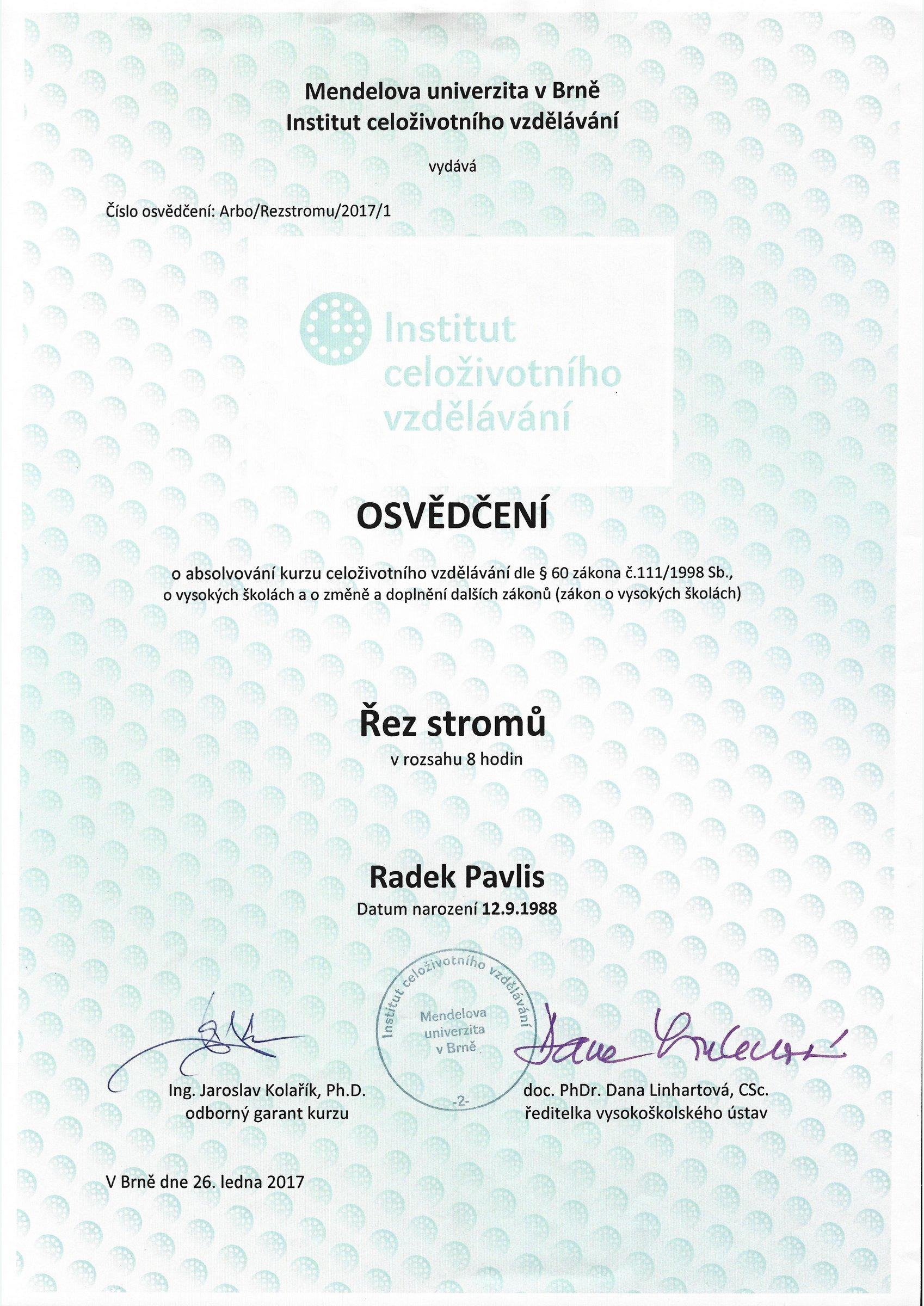 logo-rev000